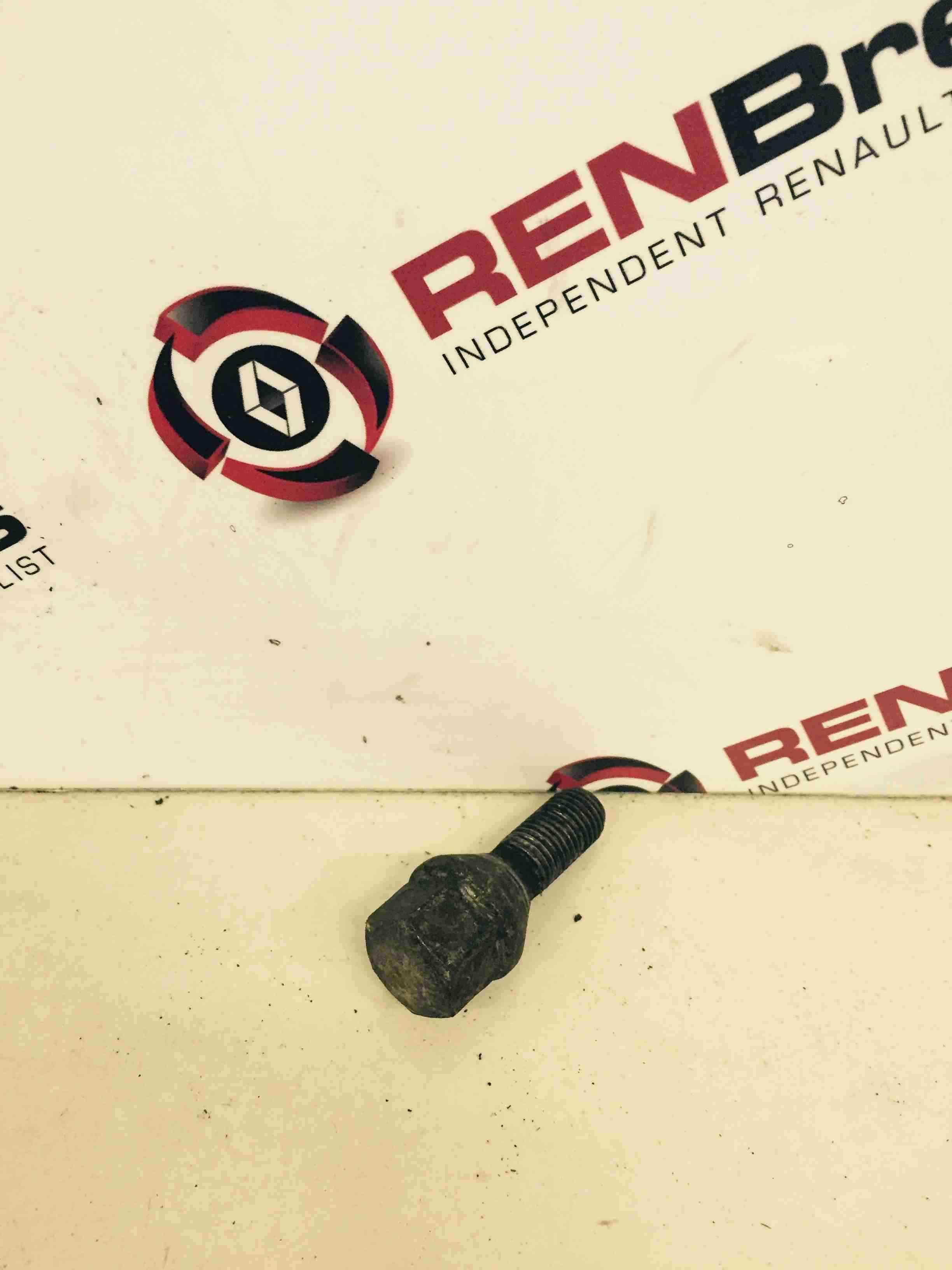 Renault Clio Megane Scenic Kangoo Alloy Wheel Nut Bolt 19mm
