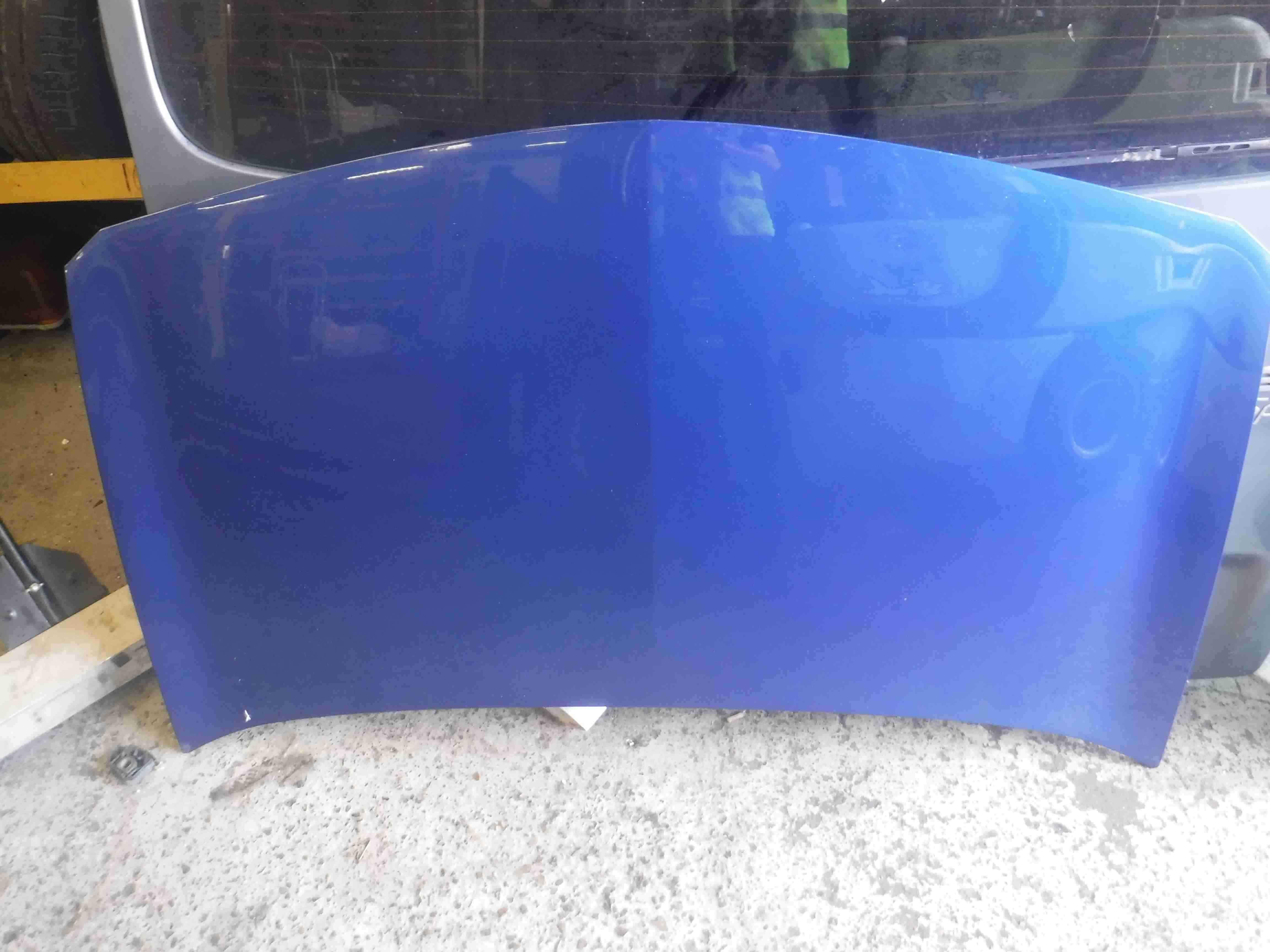 Renault Megane 2002-2008 Front Bonnet Blue TERNA