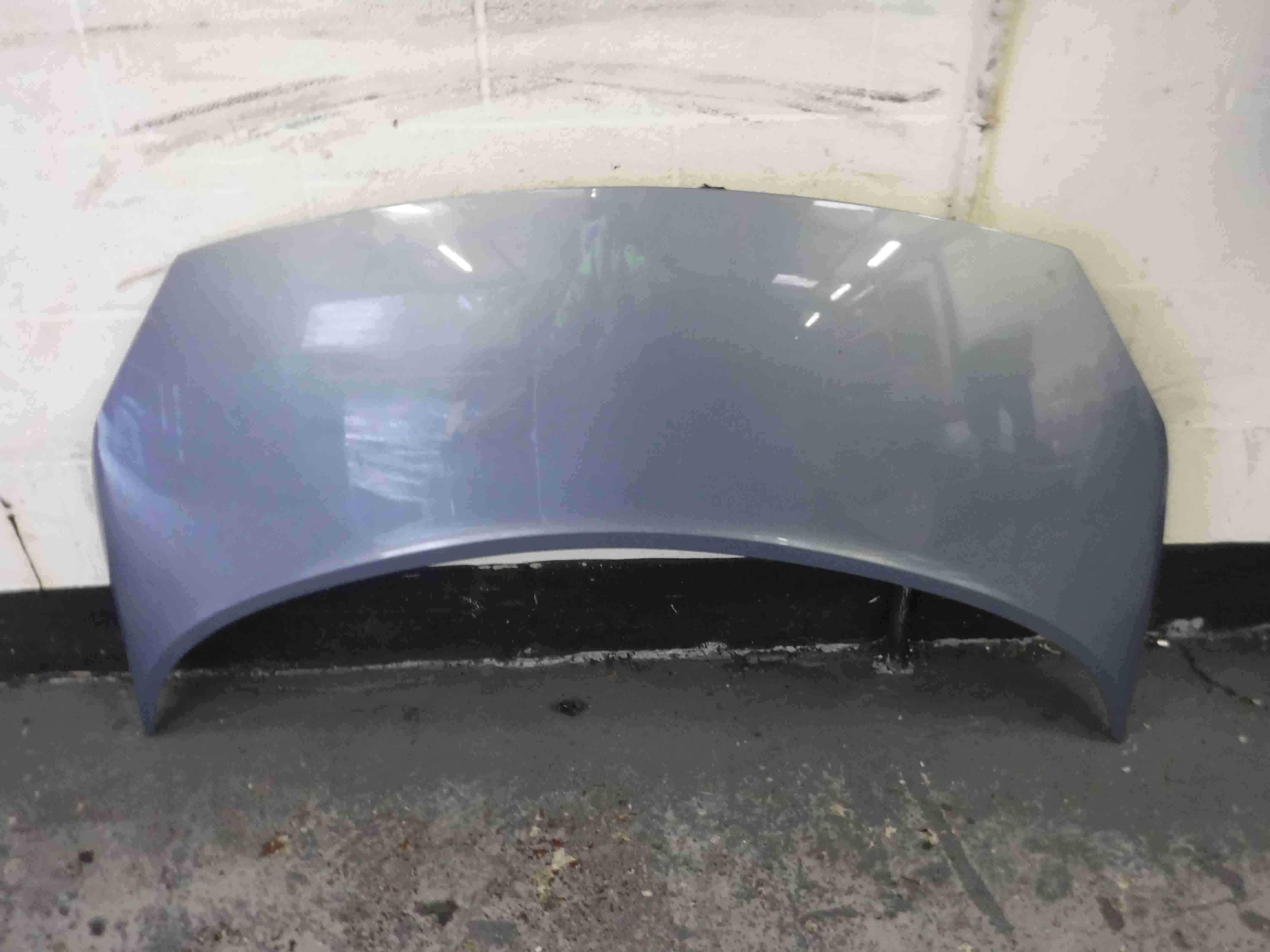 Renault Megane Scenic 2003-2009 Front Bonnet Purple Blue TED47